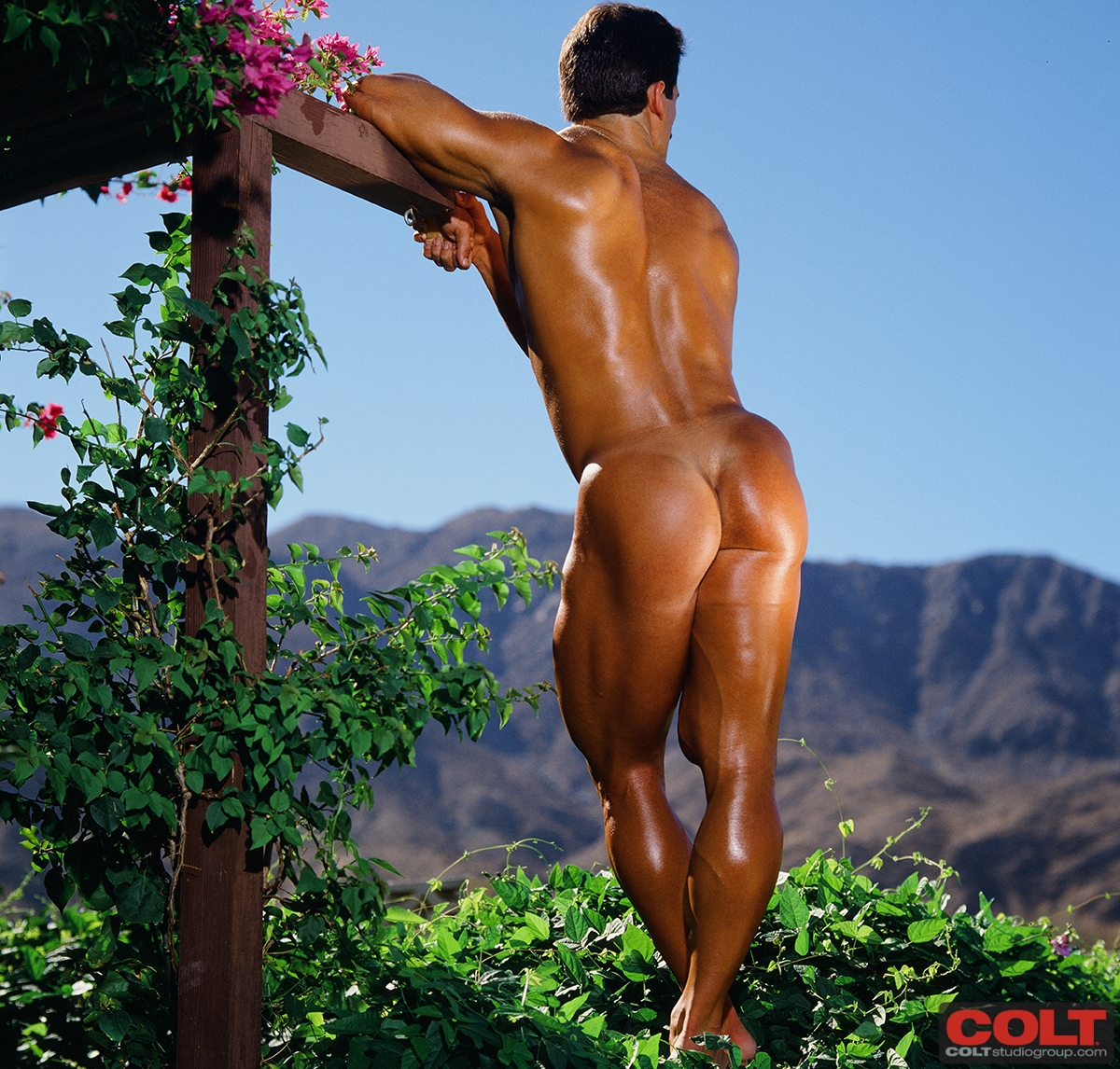 Mature naked musclewoman butts
