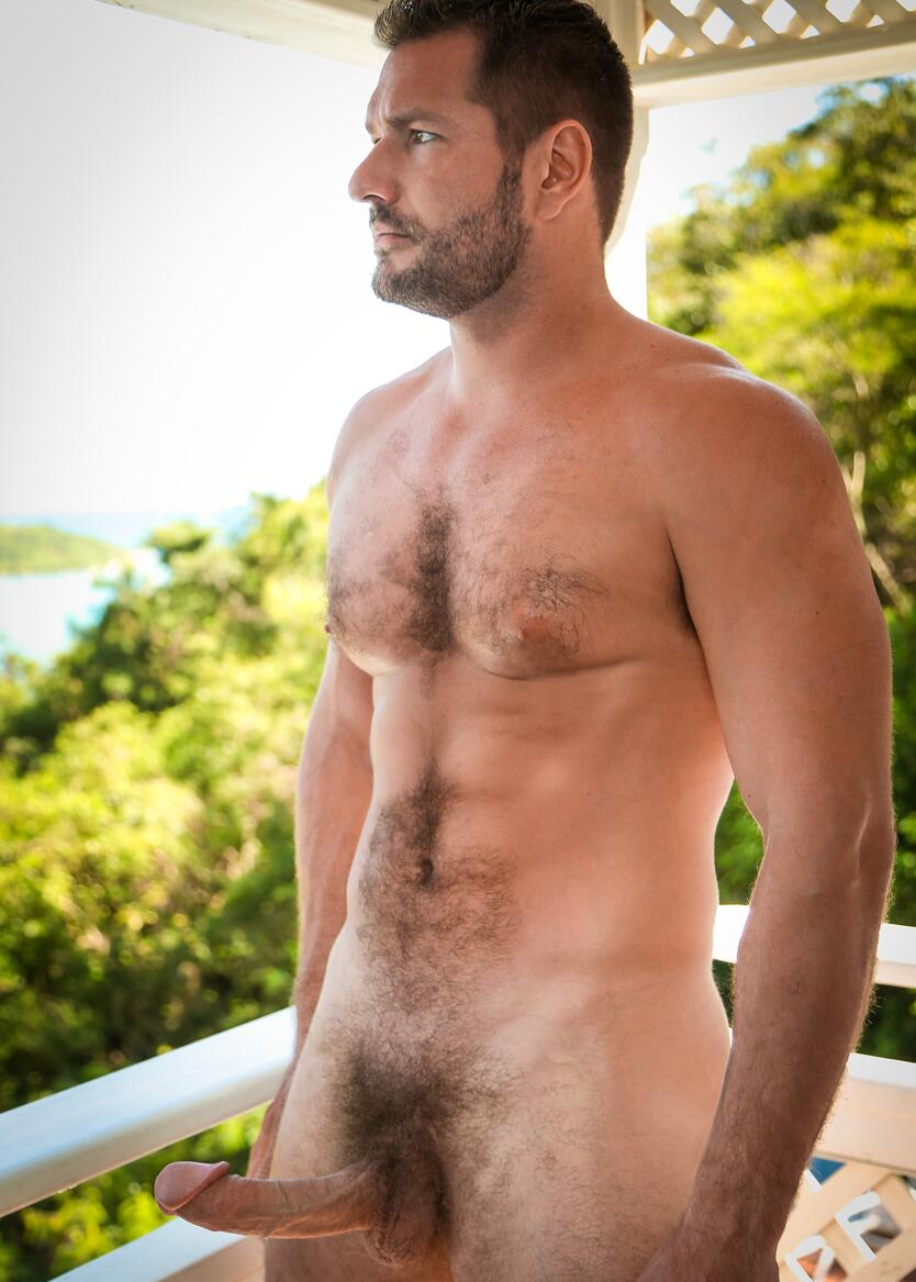 Hairy gay mature dilf
