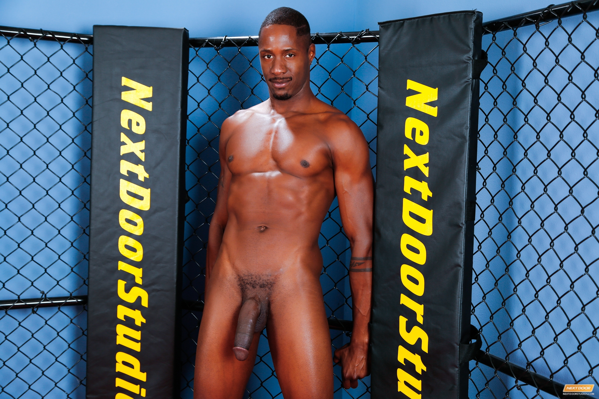Interracial black male strippers come