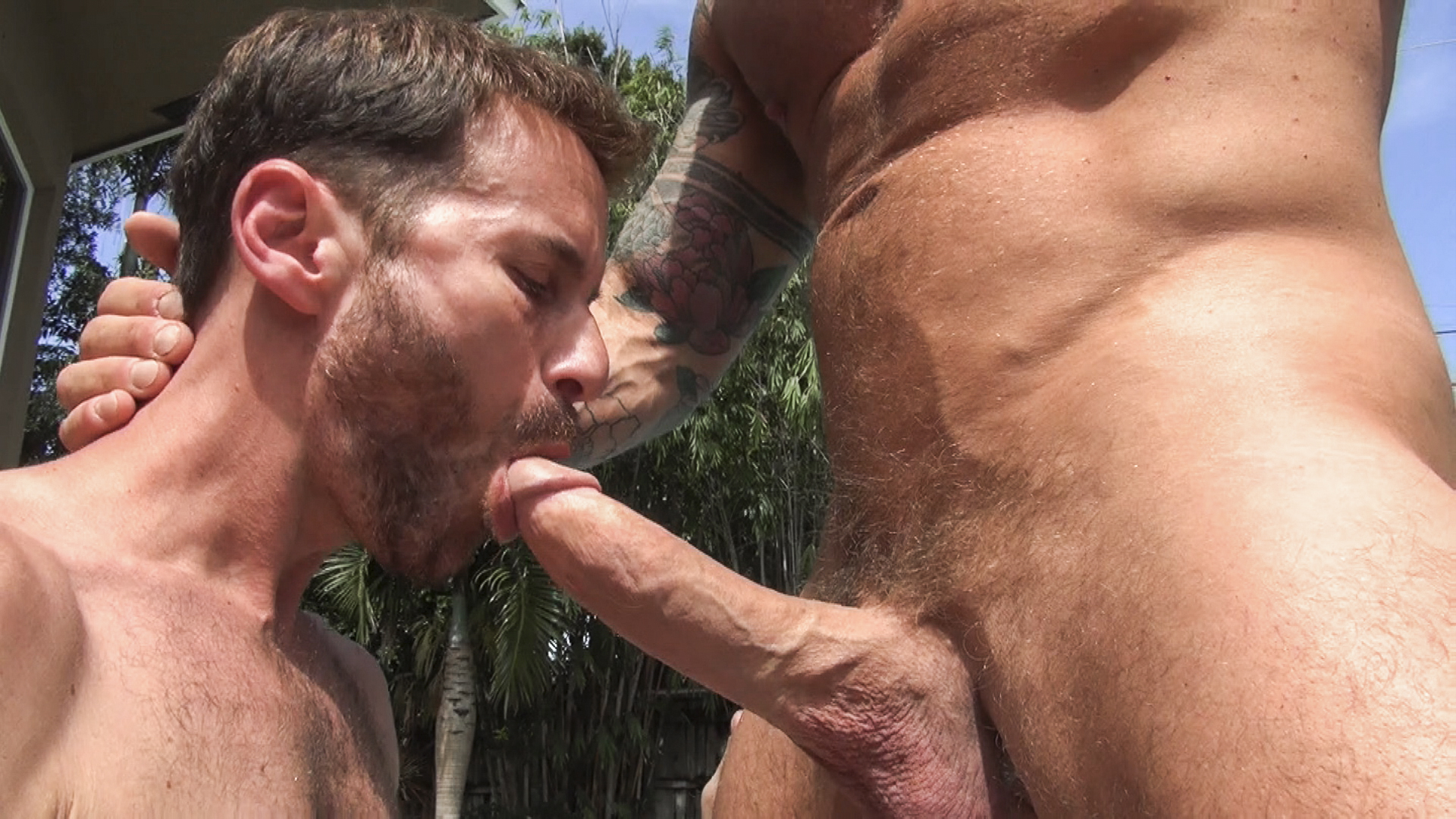 back bare bush gay george porn search w