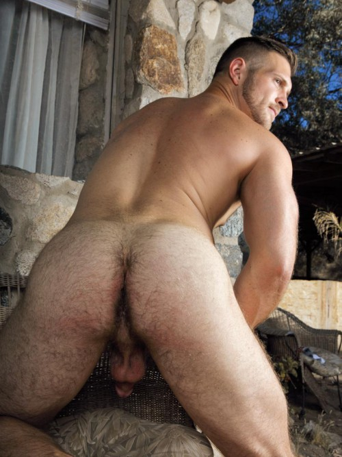 Paul Wagner, #AssWednesday, Ass, Butt, Furry, Hole, Bottom, Fucking, Cake, Luscious, Hairy,