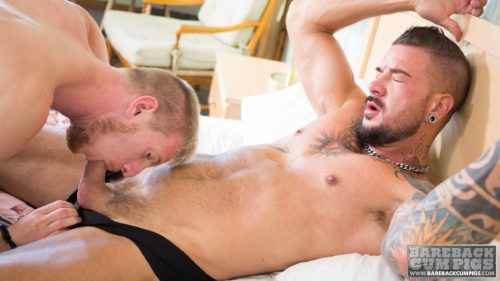 billywarren_dolfdietrich-8